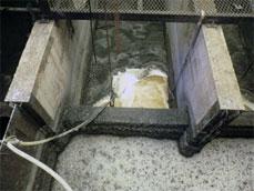 塗料粕の浮上促進、臭気対策、槽内清掃の省力化